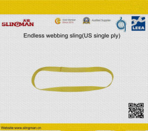 En1492-1 for Webbing Lifting Slings (TS-W01-10) pictures & photos