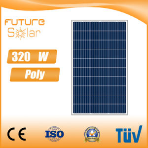 Futuresolar 320 Watts Poly PV Solar Module Sun Panel pictures & photos