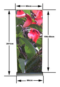 Hot Sale Clip Type Roll up Banner (SR-10) pictures & photos