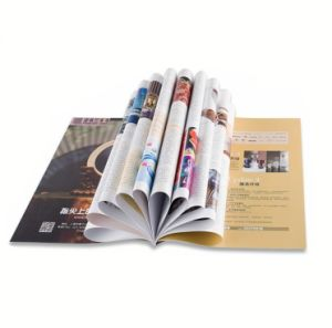 Made in China Brochure Printing Services of Ce Standard pictures & photos