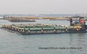 HDPE Square Aquaculture Fish Farm Cage (OEM) pictures & photos
