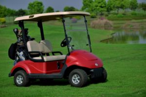 Dongfeng Electric Car for Golf