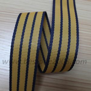 High Quality PP Webbing for Bag and Garment#1312-51 pictures & photos