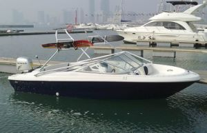 Dafman Sport Boat 190cup pictures & photos