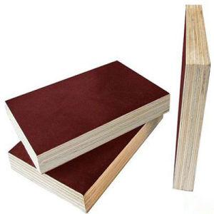 Birch Film Faced Plywood