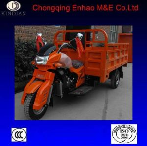 Asia Wolf Cargo Tricycle/Three Wheel Motorcycle