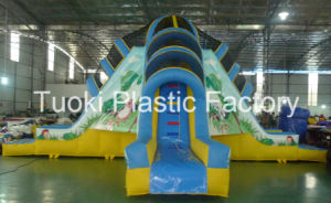 Inflatable Water Slide for Kids Game (RC-014) pictures & photos