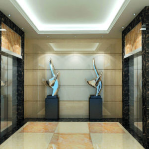 Customize Wall Cladding for 5 Star Hotel Furniture Project pictures & photos