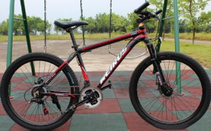 26 Inch 21 Speed Dark Knight Aluminum Alloy Mountain Bike pictures & photos