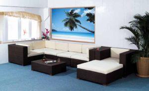 Rattan/Wicker/PE Rattan Furnitures (MS-018)