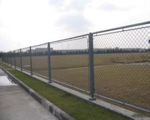 2014 High Quality Metal Fencing pictures & photos