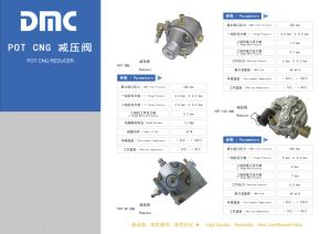 CNG Compressor with CNG/LPG Conversion Kits pictures & photos