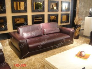 Genuine Leather Sofa (HD-209)