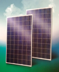 Solar PV Module 230W-240W pictures & photos