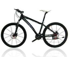 Fashion Carbon Fiber Mountain Bike