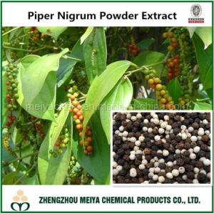Hot Sale Piper Nigrum Powder Extract with Piperine pictures & photos