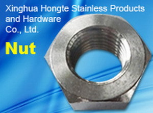 Stainless Steel DIN934 Hex Nuts pictures & photos