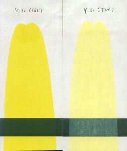 Pigment Yellow (P. Y. 62)