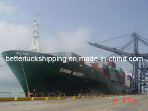 Freight and Logistics Service From China to Peru (Callao/Lima)