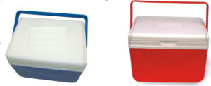 3~4L Small Cooler Box, Ice Box, Cooler Box pictures & photos