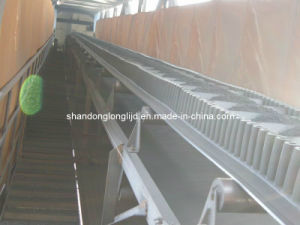 China Bucket Elevator Conveyor Belts