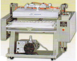 Automatic Vacuum/Full Packaging Machine (DZQ)