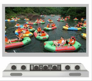 "55"" LED All Weather Flat Screen Outdoor TV pictures & photos"