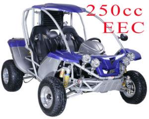 Hot Sold 250CC EEC Buggy (RLG2-250DZ)