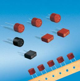 Micro Fuse Fast-Blow (ZH101)