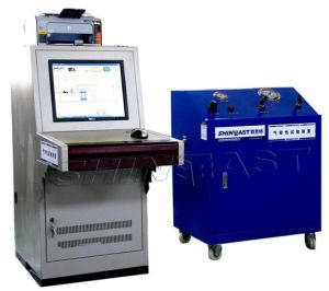 CNG Vehicle Gas Leak Test Machine (GBS40B-A) pictures & photos