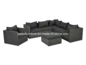 Outdoor Garden Patio Rattan Wicker Furniture (PAS-008)