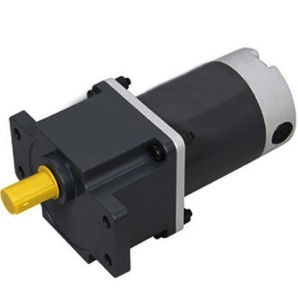 China High Torque 60w 12v 24v 90v Dc Gear Motor China Dc