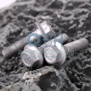 Flange Bolts (DIN6921 M5-M20 Cl. 4.8/6.8/8.8/10.9) pictures & photos