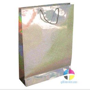 Gloss Paper Bag/ Paper Bag/Paper Shopping Bag (FC-W-0056)