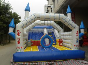 CE Certification Hot Sale Jumping Castle (TH-CB001) pictures & photos