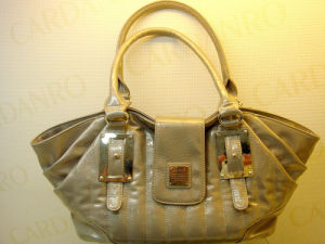 Fashion Women′s Handbags (505069-220)