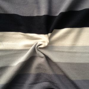 Rayon Spandex Knitting Striping Fabric (QF13-0683) pictures & photos