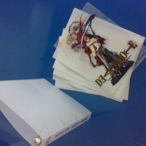 PP File Folder (TFPP010)