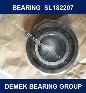 Full Complement Cylindrical Roller Bearing SL182207 pictures & photos