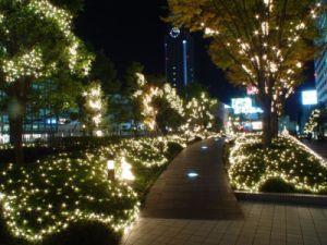 Street Light pictures & photos