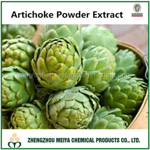 Factory Produce Artichoke Powder Extract with Cynarin 2%-10% pictures & photos