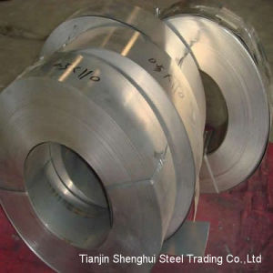 Premium Quality Stainless Steel Strips (AISI309S) pictures & photos