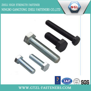 Plain Stainless Steel Hex Head Bolt (M6-M39) pictures & photos