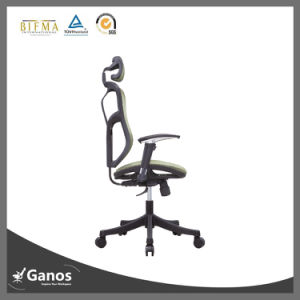 Ergonomic Healthy Ergo Villa Fabric Chair pictures & photos