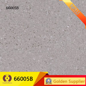 24X24 Granite Look Tile Porcelain Wall Floor Tiles (66005A) pictures & photos