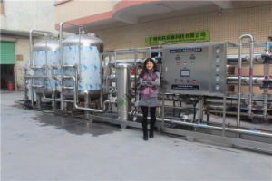 Commercial Drinking Water Purification RO Systems 15t/H pictures & photos