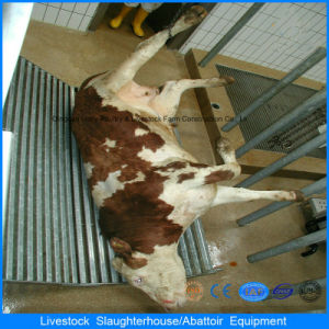 Automatic Slaughter Machine for Chicken Cattle Pig and Sheep in Poultry House pictures & photos