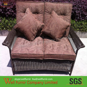 Rattan Chair/Douable Chair/Two-Seater Sofa/Wicker Furniture pictures & photos