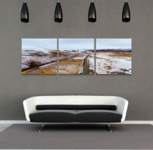 New Arrival Canvas Painting New Arrival Canvas Painting pictures & photos