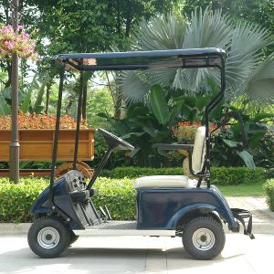 Wholesale Battery Powered 1 Seater Comfortable Golf Cart (Dg-C1) pictures & photos